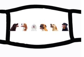 Sublimatie mondkapje honden, in 3 maten
