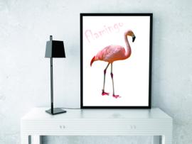 Poster Flamingo met tekst, roze