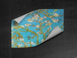 Behang vierkant zelfklevend - Van Gogh Amandelbloesem - sticker