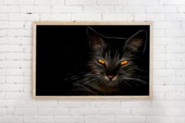 Poster zwarte kat op zwart