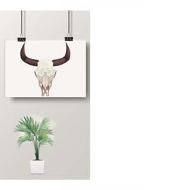 Fine Art - Bull Skull - 255 gr/m2 - A3 - structuurpapier - Stier