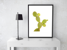 Poster Cactus - (c) in kleur op witte achtergrond A5, A4 of A3