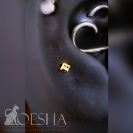 Anatometal gold quad bead end
