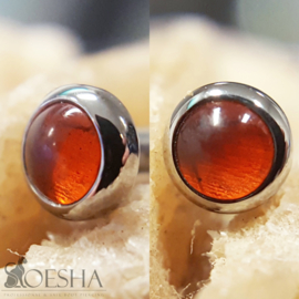 Titanium Threaded Gem End Baltic Amber