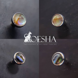 Titanium Threaded End Natural Paua Shell