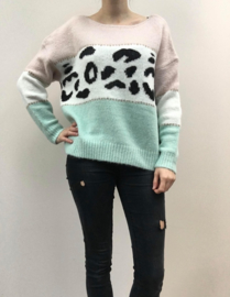 Sweater streep+leopard lichtroos/munt