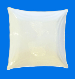 "9"" Square plate (23cm)"