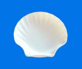 "9"" Shell plate (23cm)"