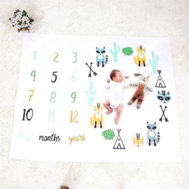 Baby Milestone Foto deken