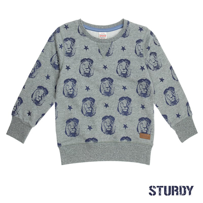 Sturdy Sweater Lion