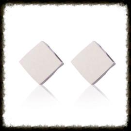RVS Ear Studs Ruitje Zilver