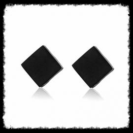 RVS Ear Studs Ruitje Zwart