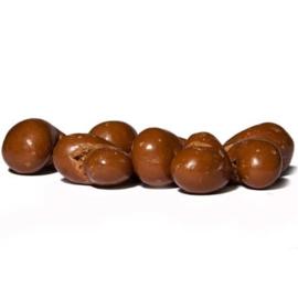 Cashewnoten Melkchocolade