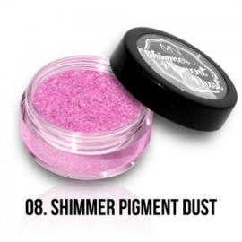 Shimmer Pigment Dust 08 - 2g