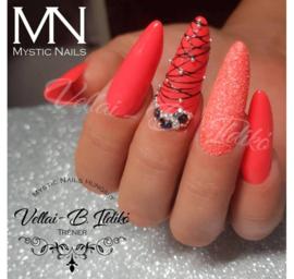 14 Daagse Vakopleiding Gel Mystic Nails