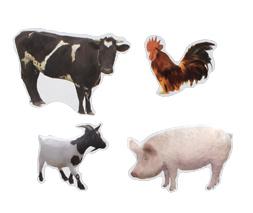 Stickervel Boerderij Dieren