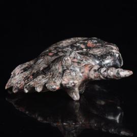 Eenhoorn van crinoid fossiel