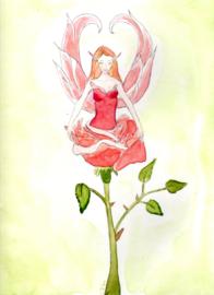 Postkaart Rooself