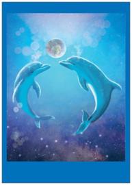 Postkaart Dolfijnen Droomtijd