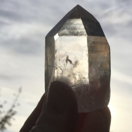 Inner Source Lemurian