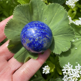 Lapis lazuli bol 2 (75 gram)