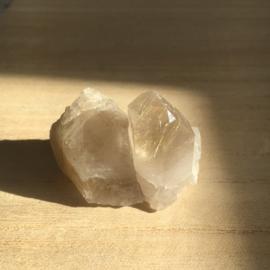 Lemurisch Zaadkristal met Rutiel (LZRII)