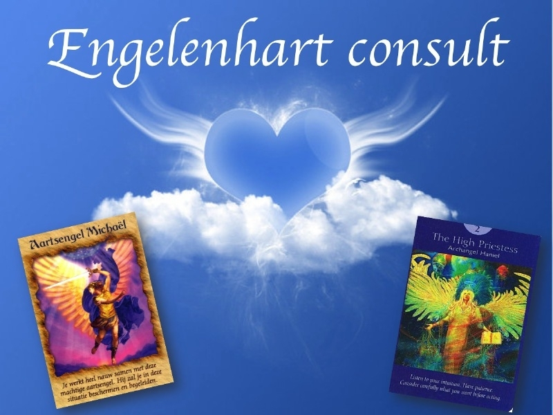 Engelenhart e-consult