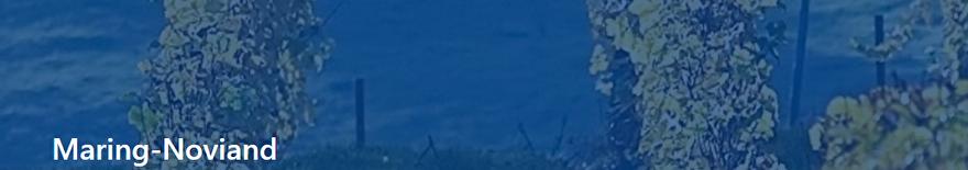 Maring-noviand-banner.png