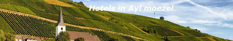 ayl-hotel-banner-moezel-2019.png