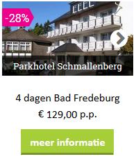 bad fredeburg-parkhotel schmallenberg-voordeel-sauerland.png
