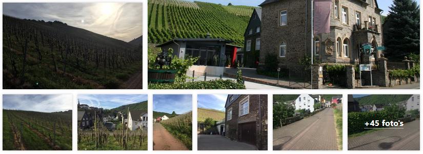 enkirch-appartementen-weingut-anker-moezel-2019.png