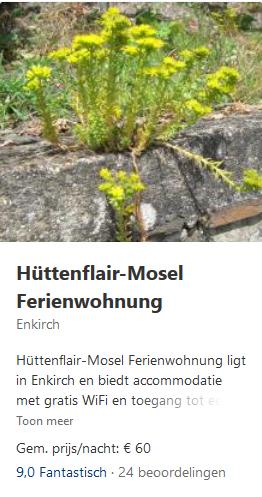 enkirch-hüttenflair-mosel-2019-moezel.png