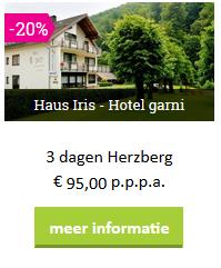 harz-herzberg-haus-iris-moezel-2019.png