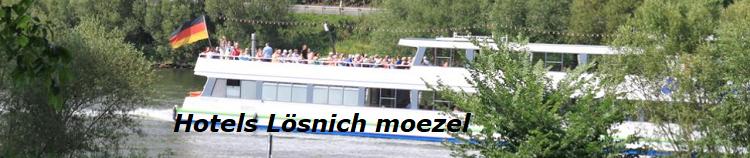 lösnich-banner-moezel-2019.png