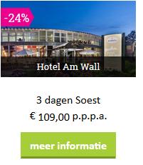 sauerland-Soest-am-wall-moezel-2019.png