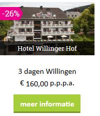 sauerland-Willingen-hotel-willingerhof-moezel-2019.png