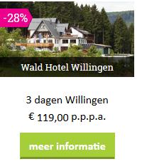 sauerland-Willingen-waldhotel-moezel-2019.png