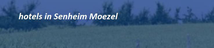 senheim-banner-moezel-2019.png