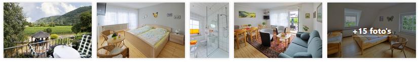 trittenheim-appartement-scholtes-hammes-moezel-2019.png