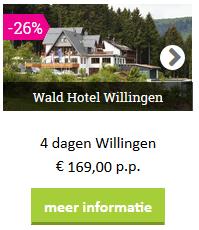 willingen-wald hotel-voordeel-sauerland.png