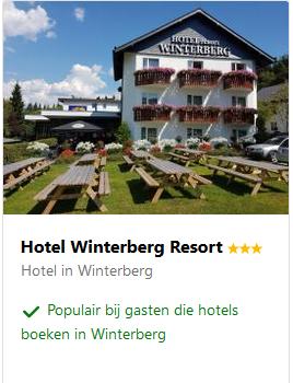 winterberg-meest-winterberg-resort-moezel-2019.png