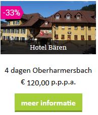 zw-Baren-hotel.png
