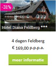 zw-diana-feldberg.png