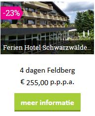 zw-feldberg-schwarzfekder-hof-moezel-2019.png
