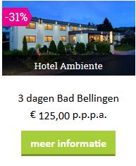 zw-voordeeluitjes-hotel-ambiente-2019.png