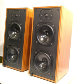Bowers & Wilkins DM14