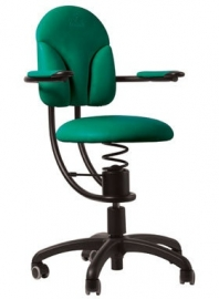 SpinaliS Basic R604 Groen