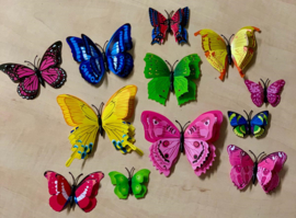 Dubbele random 3D-vlinders