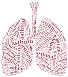 In 2018 in totaal 171 sterfgevallen door Astma
