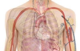 Kennis Ziektebeelden longziektes